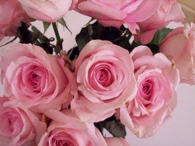 flowers photo 4