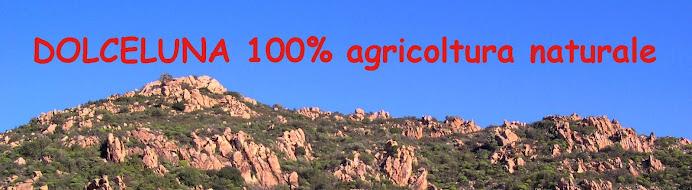 DolceLuna agricoltura naturale miele olio eco bio balena frutta sardegna mare agriturismo