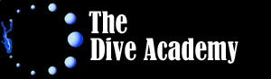 The Dive Academy Blog