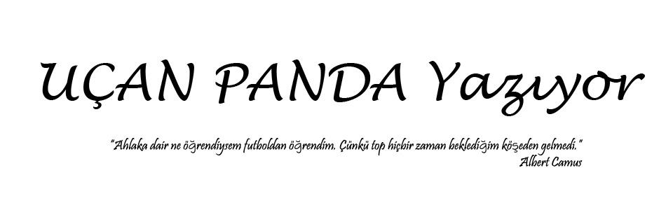 Uçan Panda Yazıyor ...