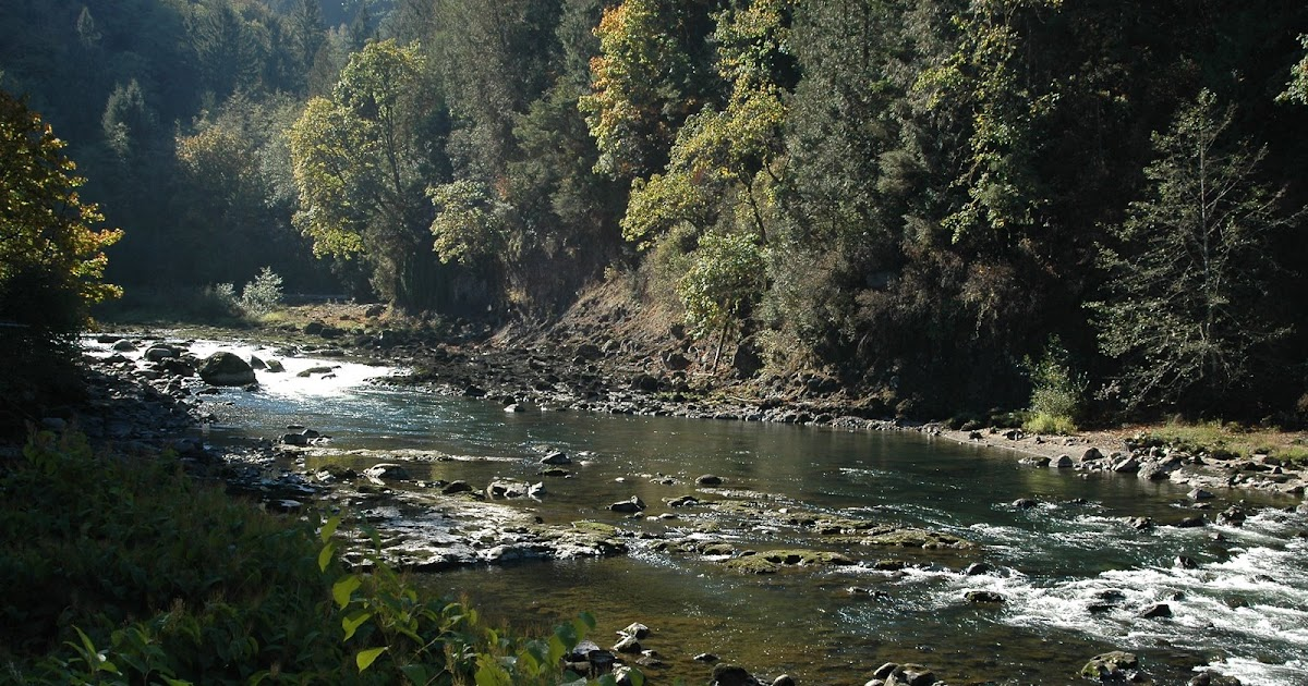 The headhunter snoqualmie river washington for Snoqualmie river fishing