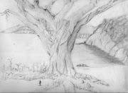 Dibujos en Lapiz tree