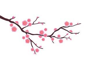 Fatfatsheep Chinese Blossom