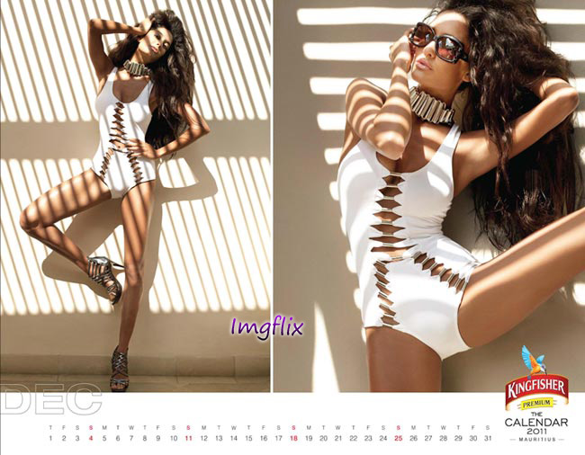 Labels: kingfisher calendar 2010, kingfisher calendar 2011,
