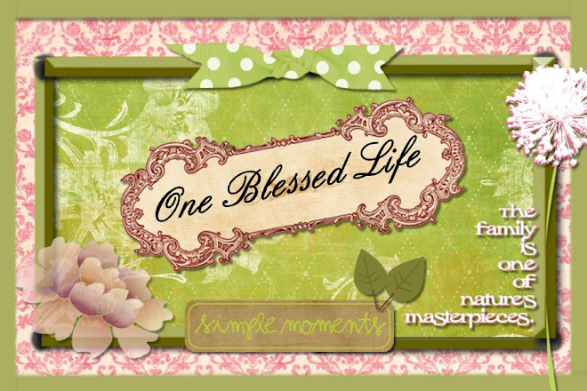 One Blessed Life