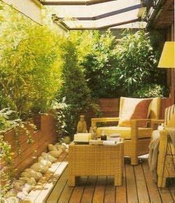 Mayo 2010 cuidado de plantas revista de cuidado de - Imagenes de terrazas con plantas ...