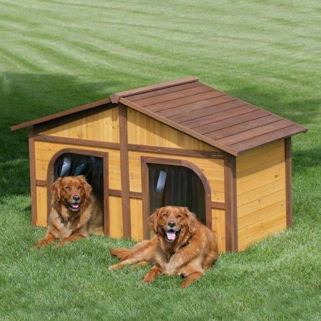 FUNZONE 10 Cool Dog Houses