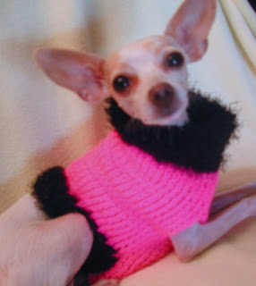 Hot Pink Dog Sweater, the perfect accessory for any cutie!