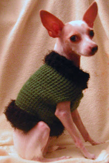 This dog sweater was featured on schroedersisters.com/guide/warm_fuzzies.htm