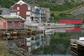 Beautiful NFLD