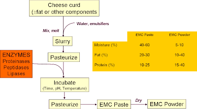 cheese production process essay Making a grilled cheese sandwich is easy, right but when i think of how many burned grilled cheese sandwiches i have eaten, or i have made myself, i realize that most of the grilled cheese sandwiches i have known have had at least one burned side.