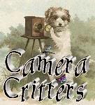 Camera Critters (Saturdays)