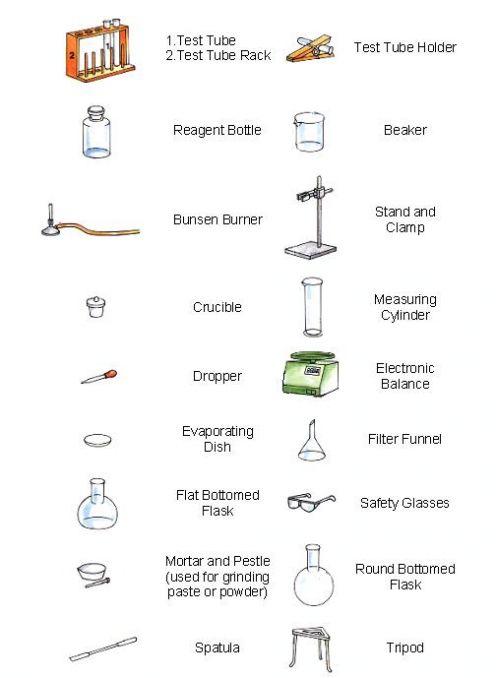 Laboratory Apparatus Worksheet Answers - Best Worksheet