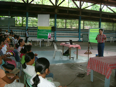 Congressman Mercado Agriculture Project