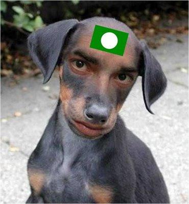 gambar dada anjing yang seksi