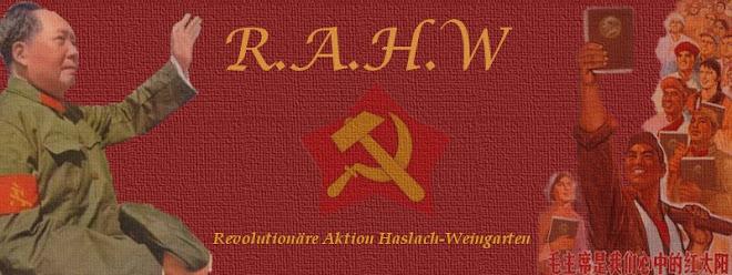 Revolutionärer Aufbau Haslach Weingarten