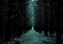 O caminho mais longo...