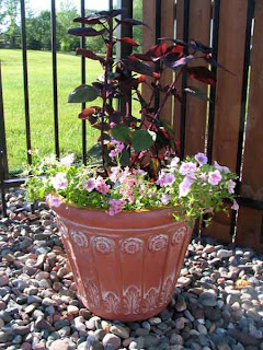Pool planter