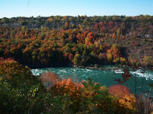 The Niagara Falls River