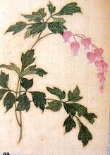 Yun shouping1633- 1690