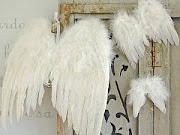 Stora vackra änglavingar....