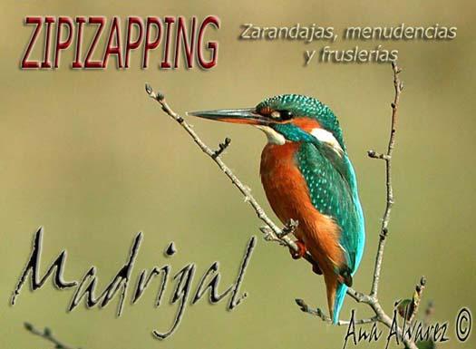 zipizapping