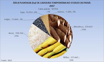 Lavoura Temporária no Pará: 2007