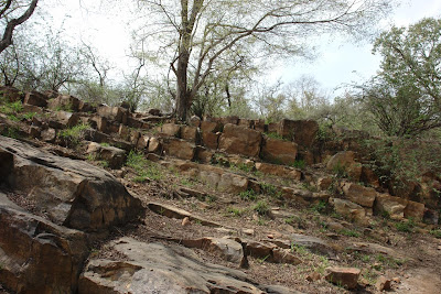 Rocks inside Sariska
