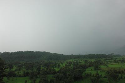 Greenery in Dharamshala