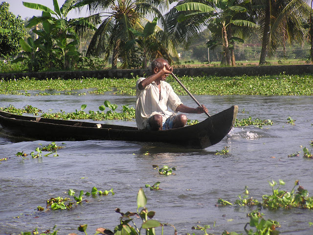 A man taking his boat through weed laden waters in Kerala, India