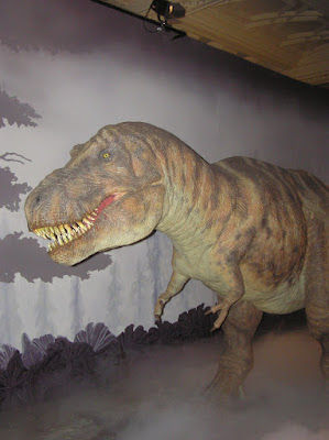 Replica of T Rex in Natural History Museum in London