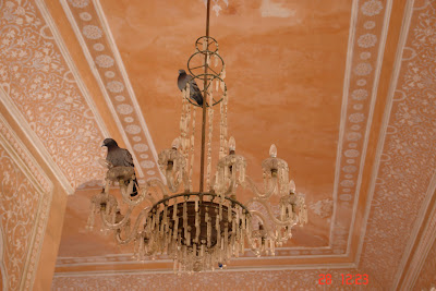 Chandelier with pigeons on them in the Jaipur City Palace