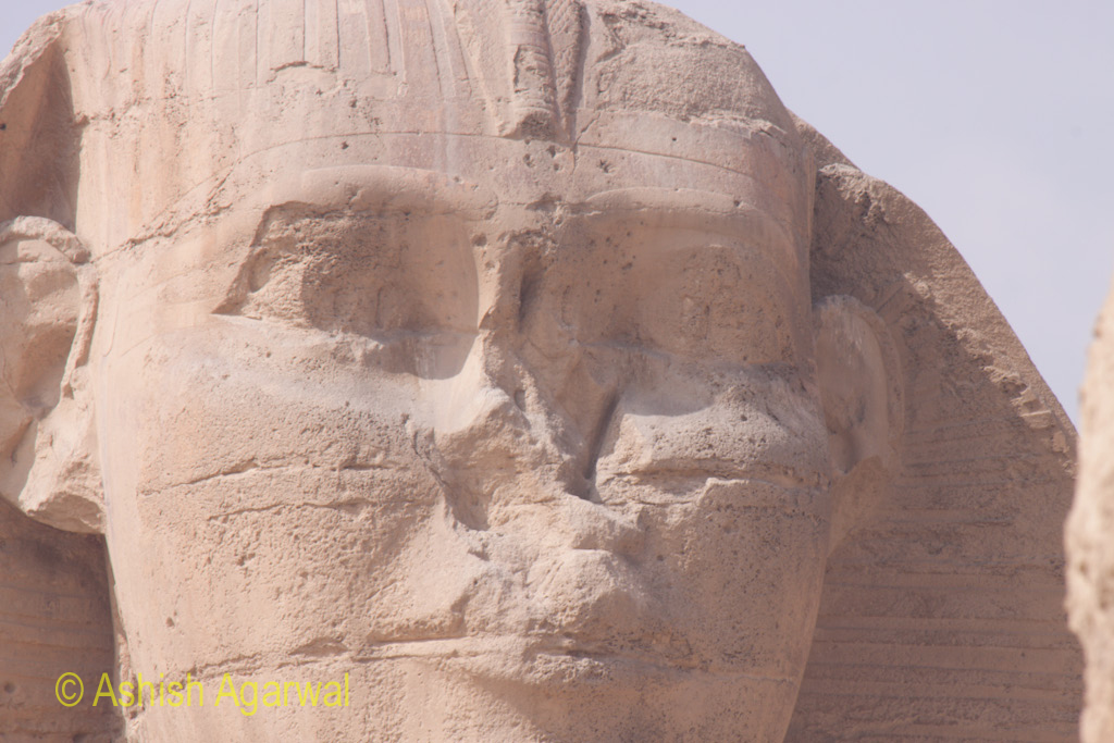 A closer view of the face of the Great Sphinx, including the broken nose