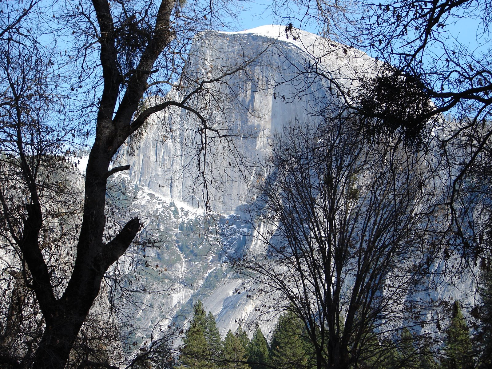 [Yosemite+Birthday+Trip+045.jpg]
