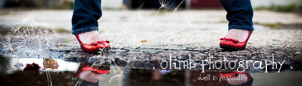 Olimb Photography Blog