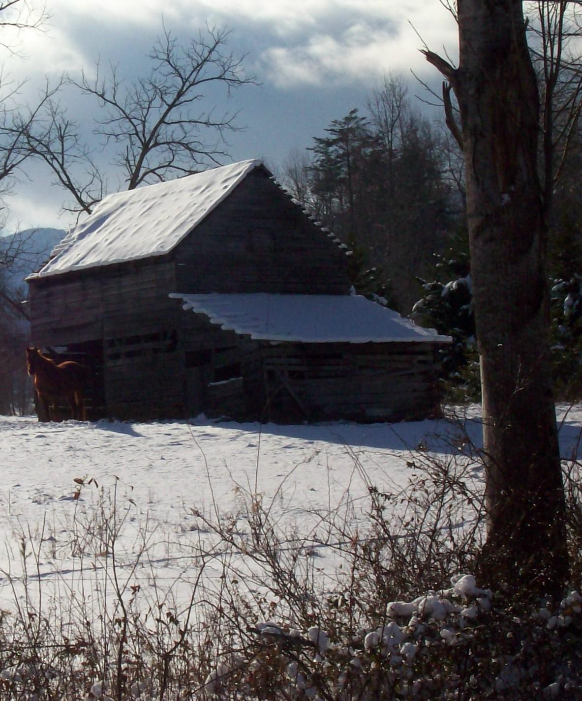 http://3.bp.blogspot.com/_8WaRFqx8enw/TRsolvRx37I/AAAAAAAAAdM/VPLz5cb5GjQ/s1600/horse+barn+III.jpg