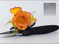 Wallpaper Calendar For September 2009