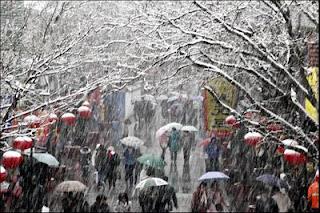 New Years Eve Snowfall