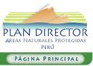 Doumentos: Grupos de Trabajo,  Elaboración del Plan Director del SINANPE