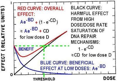 harmful effects of radiation essay