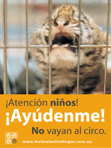 CIRCOS PERO SIN ANIMALES.