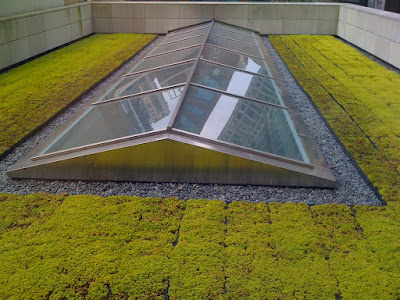 Up Close With Apple Stores Green Roof as well Tribune highlights further Article together with 0201 furthermore Tribune highlights. on 2400 square feet how many inches
