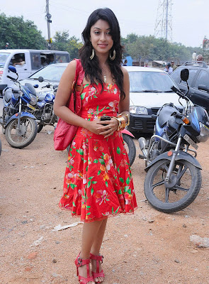 Tollywood Actress Payal Gosh Photos Gallery
