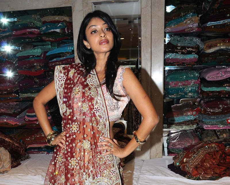 Actress Payal Gosh Hot Stills glamour images