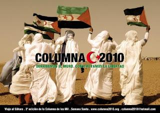 Columna 2010, Sahara