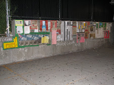 DEMOCRACY WALL