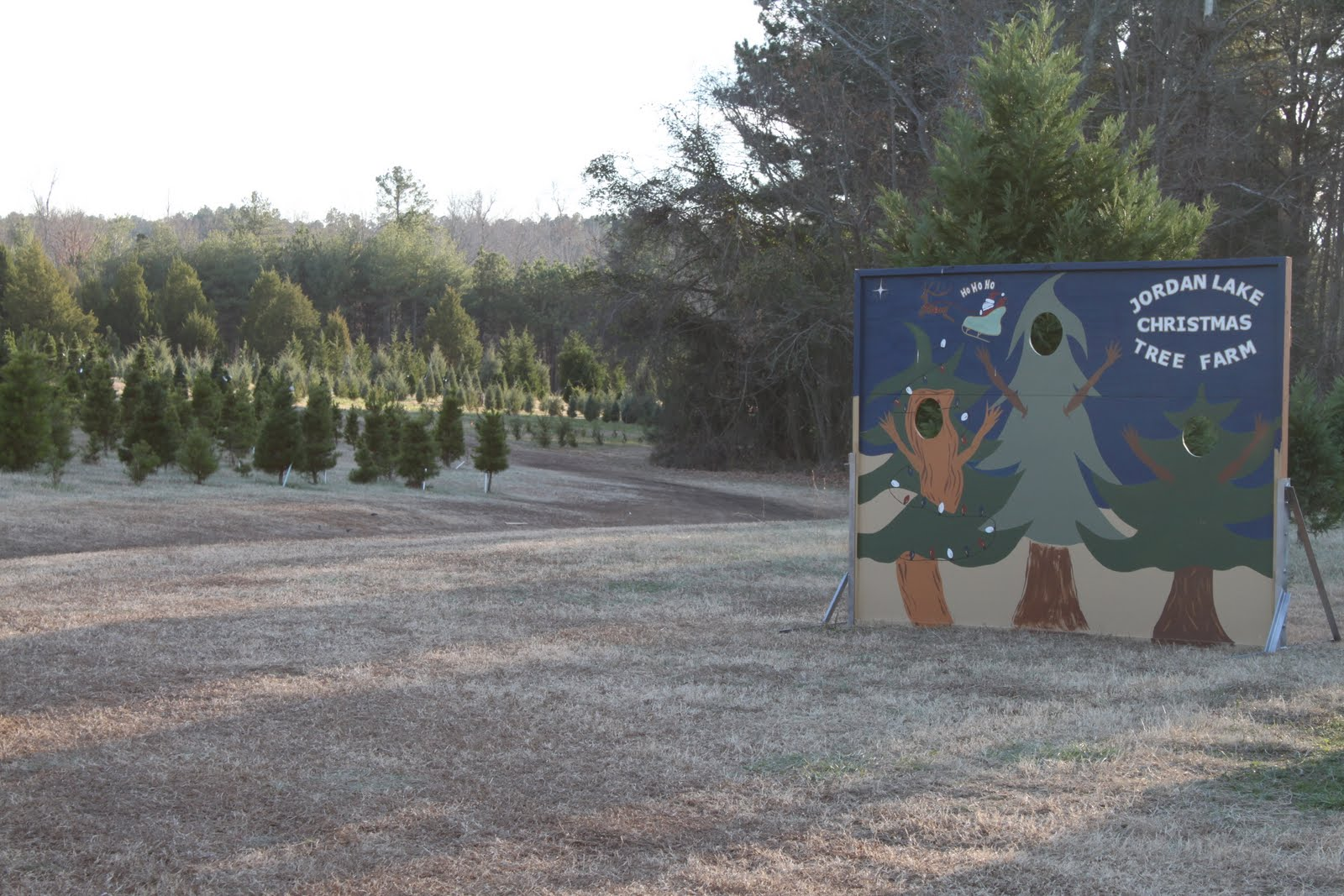 Notes from a Mom in Chapel Hill (A Guide): Jordan Lake Christmas ...