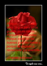 ¡Una rosa hermoza!