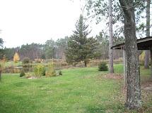 Barefoot Hippie Homestead Mystic Meadows Daylily Farm