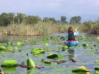 Mony sul lago di Alserio
